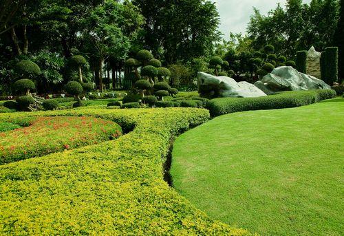 verde-giardinone
